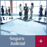seguro-judicial-merit