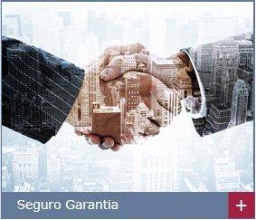 Merit Seguros - Produto Seguro Garantia